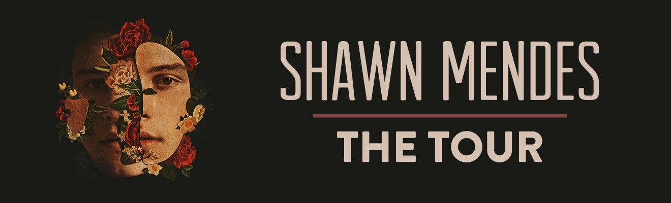 Shawn Mendes Houston Toyota Center